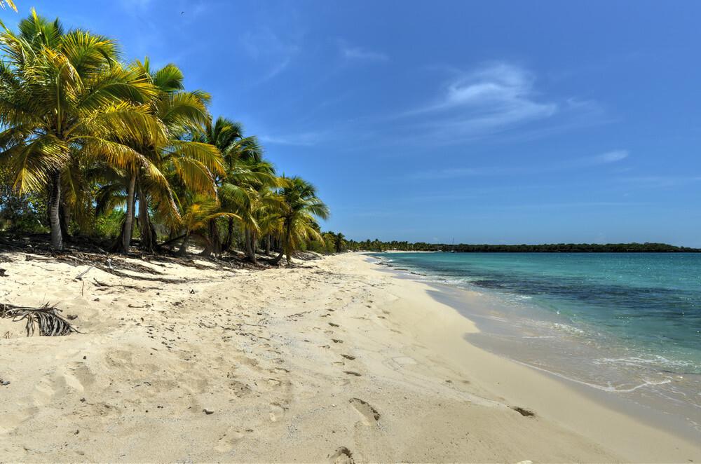Isla Catalina Beach