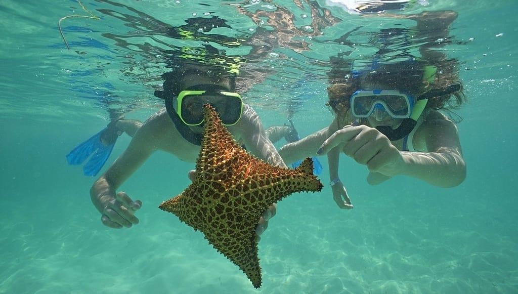 Isla Saona snorkeling