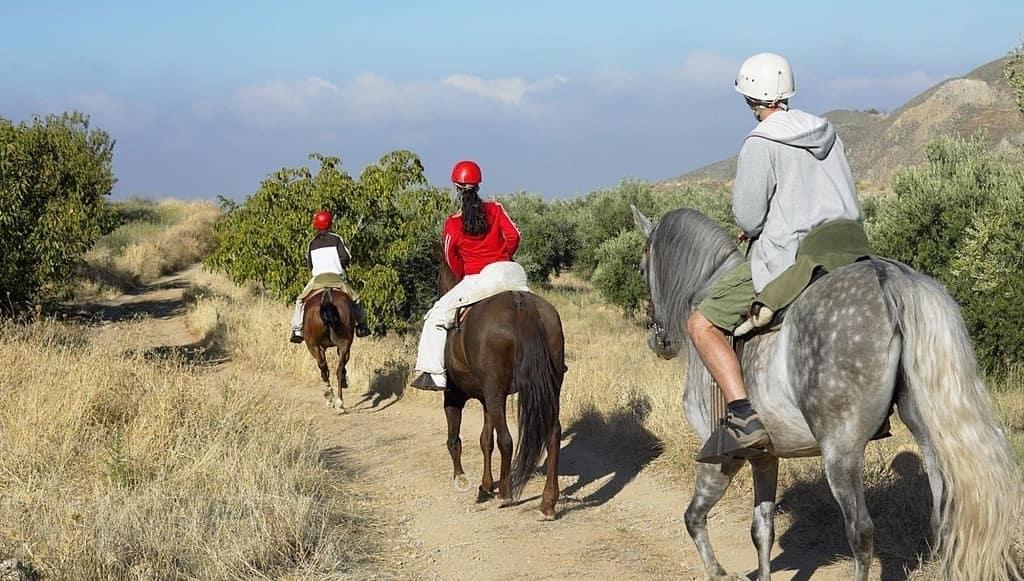 horses riding punta cana