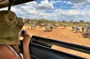 safari punta cana