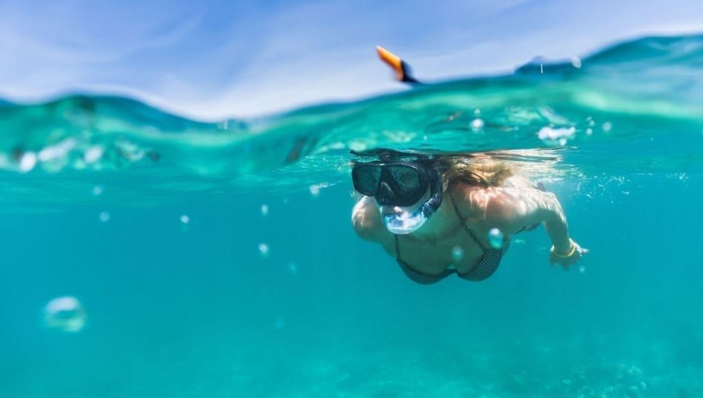Plongée sur l'île de Catalina