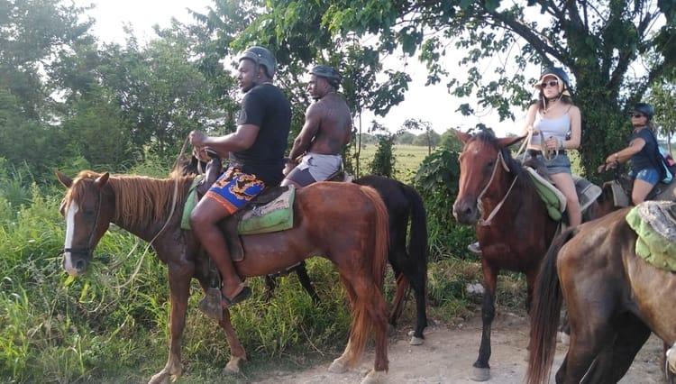 horse riding combo dunne buggy fun
