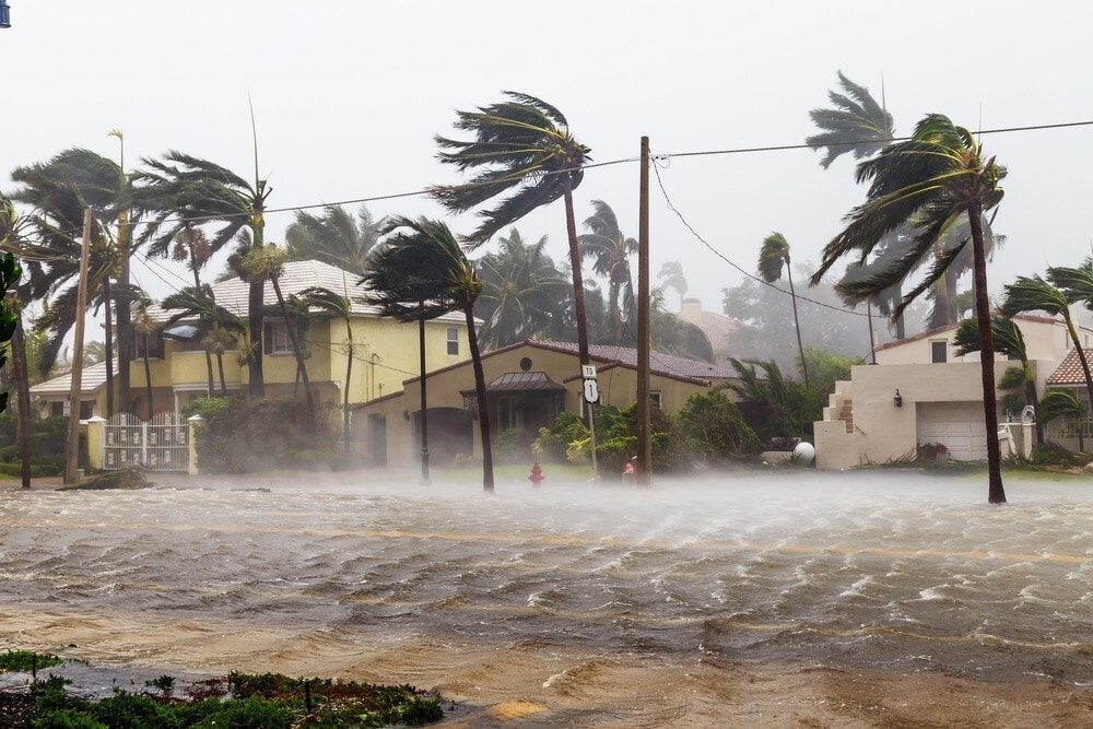 Hurricane with wind in Punta Cana