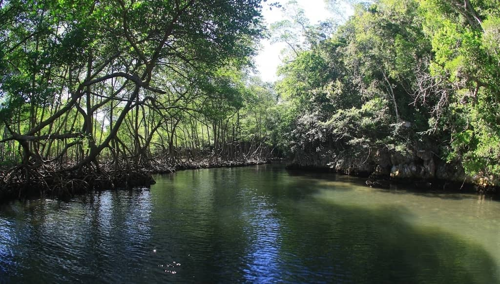 Samana excursion republica dominicana
